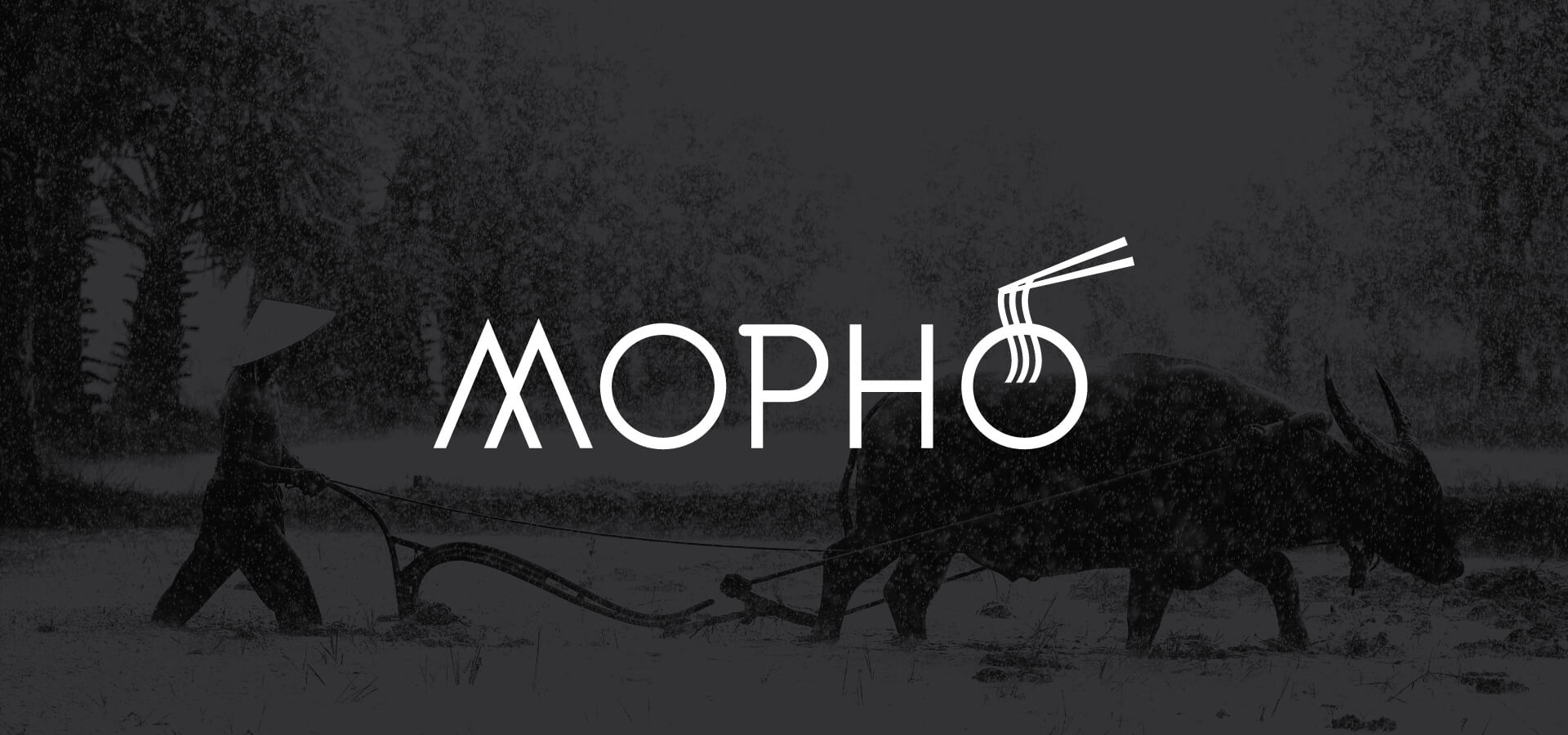 Mopho Logo and brand identity