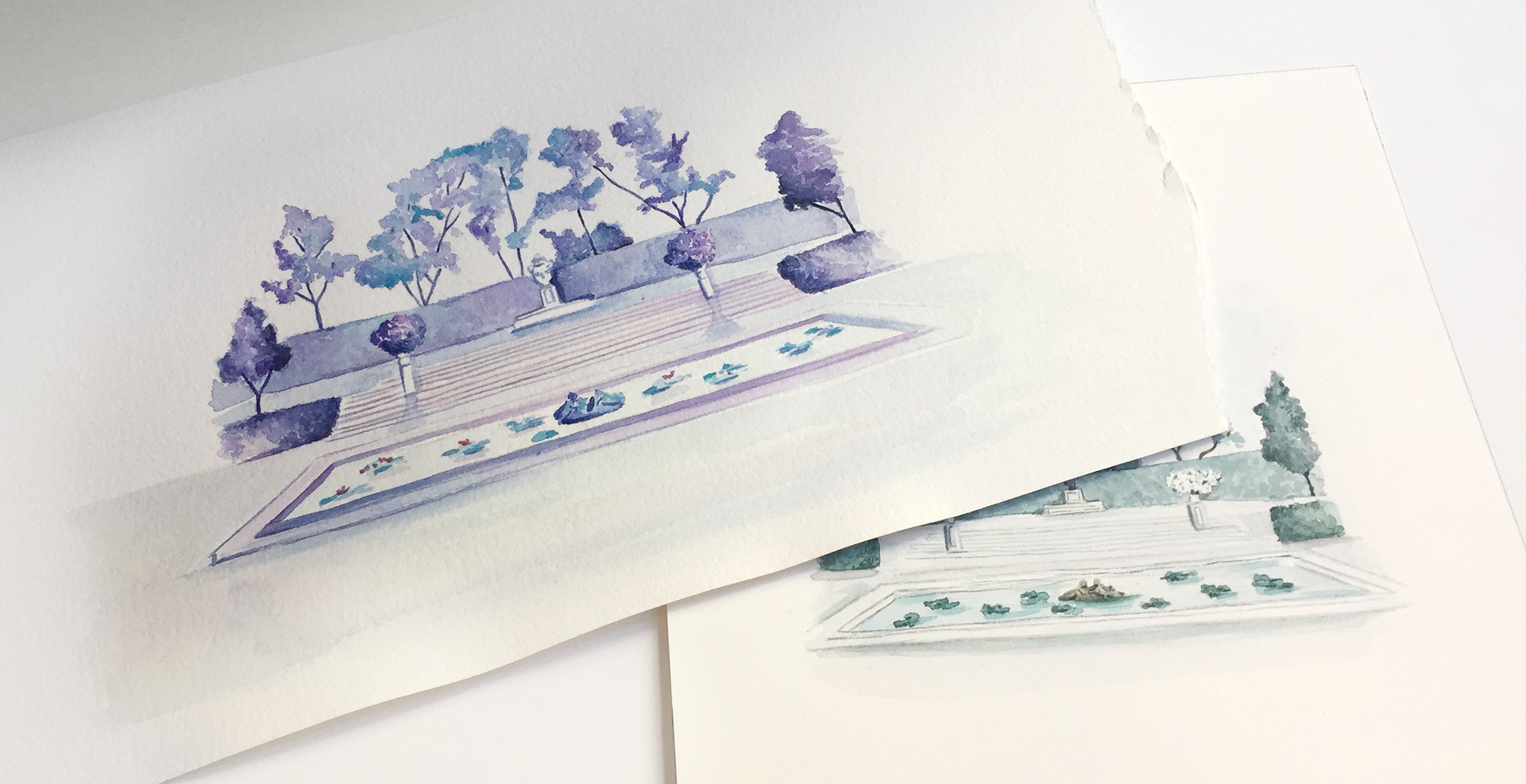 Watercolor paintings in lavender and green